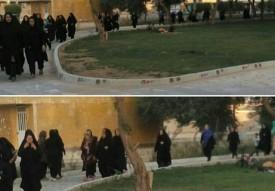 همایش پیاده روی پارک بهار ماهشهر۱